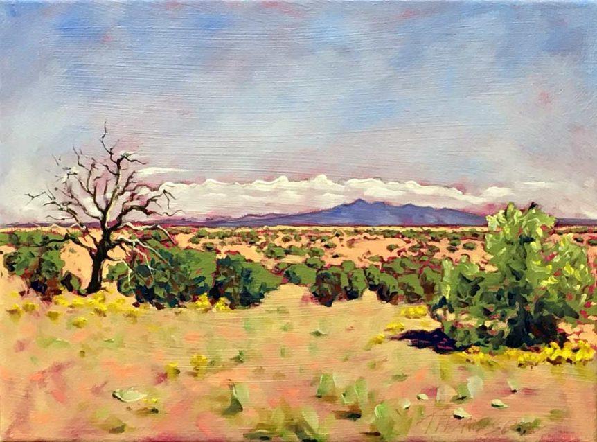 Desert East of Sandia Mountains by Stuart Thompson