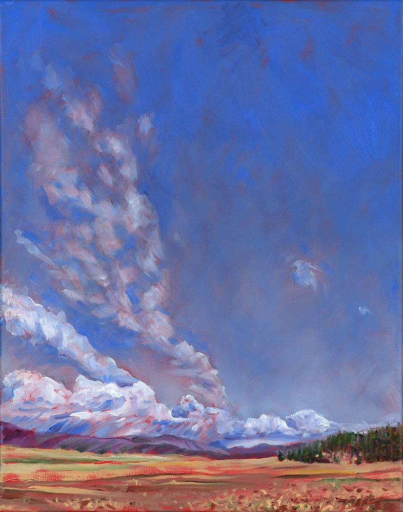 Valles Caldera, N.M. by Stuart Thompson