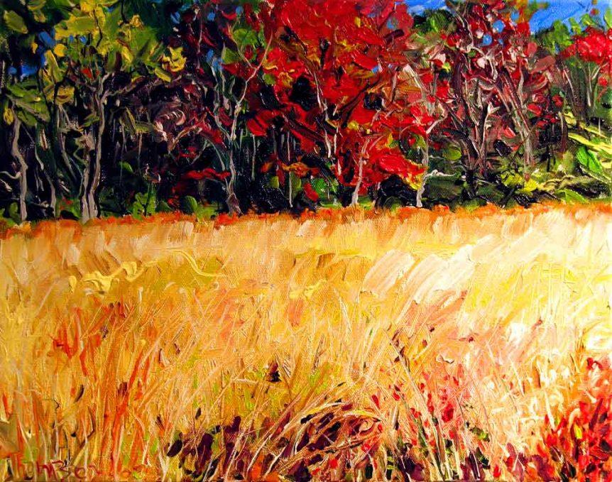 Mountain Meadow by Stuart Thompson