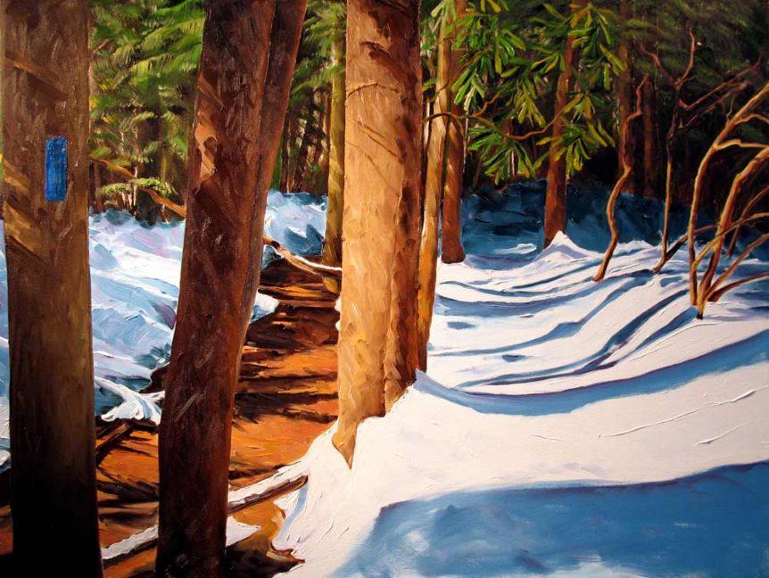 Spruce Run Trail (Blue Blaze) by Stuart Thompson